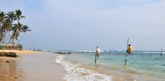 Stilt Fishermen of Sri Lanka Royalty Free Stock Images
