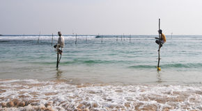 Stilt Fishermen of Sri Lanka Stock Image