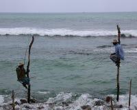 Stilt Fishermen Royalty Free Stock Photos