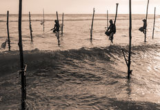 Stilt fishermen in Sri Lanka Royalty Free Stock Photos