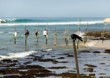 Stilt fishermen in Sri Lanka Stock Images