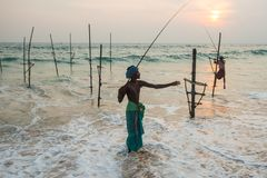 Stilt Fishermen Sri Lanka Traditional Fishing Stock Images