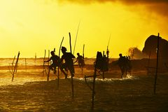 Stilt fishing Royalty Free Stock Photography