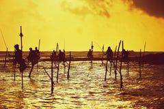 Stilt fishing Royalty Free Stock Photos