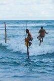 Stilt Fishing Sri Lanka Traditional Pole Dip Wave royalty free stock photos