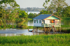 Stilt house. Along the Amazon river royalty free stock images