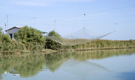 Stilt house and fishing nets along the Po Delta Stock Photos