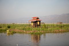 Stilt house among the floating gardens on the Lake Inle Myanmar Stock Images