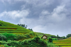 Stilt house on the rice terraced field with the sky and clouds a Stock Image