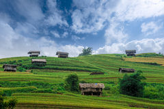 Stilt houses on the hill of rice terraced fields Stock Photography