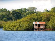Stilt hut in Bocas del toro Stock Image