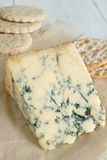 Stilton cheese Royalty Free Stock Photos