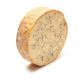 Stilton cheese round Royalty Free Stock Images