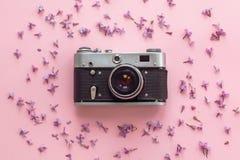 Stilvolle alte Fotokamera auf rosa Hintergrund mit lila Blumen Stockfotos