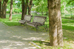 Stilvolle Bänke im Sommerpark Stockfotos