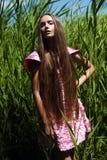 Stilvolle Frau im Kleid im hohen Gras Stockbild