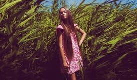 Stilvolle Frau im rosa Blumenblattkleid im hohen Gras Lizenzfreie Stockfotos