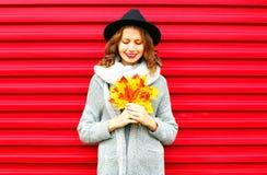 Stilvolle glückliche Porträtfrau hält gelbe Ahornblätter Lizenzfreies Stockfoto