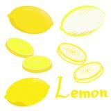 Stilvolle Ikone der gelben Zitrone stellte auf weißen Hintergrund ein Stockfotos