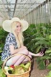 Stilvolle junge Frau, die Veggies im Bauernhof erntet Stockbild