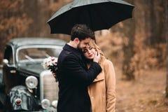 Stilvolle liebevolle Hochzeitspaare, die in einem Kiefernwald nahe Retro- Auto küssen und umarmen lizenzfreie stockfotos