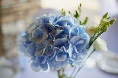 Stilvolle, moderne Hochzeitsbogenzeremonie verziert mit den Blauen und des Weiß verschiedenen Blumen Blumenauslegung? Hintergrund Stockbild