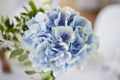 Stilvolle, moderne Hochzeitsbogenzeremonie verziert mit den Blauen und des Weiß verschiedenen Blumen Blumenauslegung? Hintergrund Lizenzfreies Stockbild