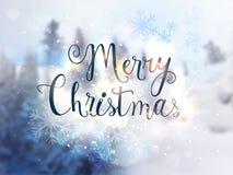 Stilvoller Text für Feier der frohen Weihnachten stock abbildung