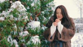 Stilvolles Mädchen des Brunette nahe Schnee bedeckte Bäume im Winter, in der braunen Pelzmantelzeitlupe stock footage