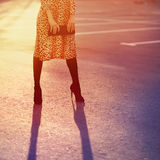 Stilvolles Modekonzept, elegante hübsche Frau im Leopardkleid lizenzfreie stockbilder