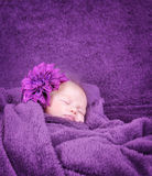 Stilvolles neugeborenes Mädchen Stockbild