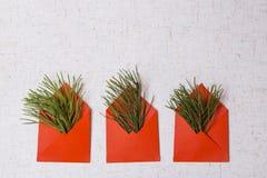 Stilzhizni, nuovo anno, buste rosse Fotografie Stock Libere da Diritti