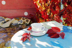 Stimmung - Herbst Gefallene Blätter nostalgie Stockfotografie