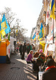 会集茱莉亚s支持者timoshenko 免版税库存照片
