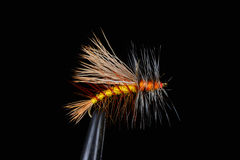 Stimulator dry trout fly Royalty Free Stock Photography
