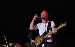 Sting imagens de stock royalty free