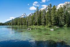 Sting Lake en parc national de Teton Image libre de droits