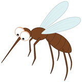 Sting mosquito with big eyes. Illustration Stock Images