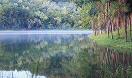 Sting-oung sjö, Thailand Royaltyfri Fotografi