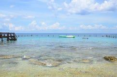 Sting Ray Beach Cozumel, México imagen de archivo