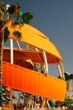 Stinger da laranja de Disneylândia Fotos de Stock Royalty Free