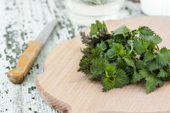 Stinging nettle on a cutting board Stock Image