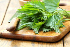 Stinging Nettle On A Cutting Board Royalty Free Stock Photography