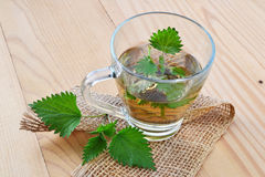 Stinging nettle tea (Urtica dioica) Stock Image