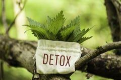 Stinging Nettle with the word Detox. Stinging Nettle in a jute bag with the word Detox stock photography