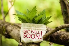 Stinging Nettle with the word Get well soon!. Stinging Nettle in a jute bag with the word Get well soon stock image