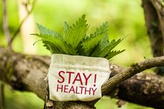 Stinging Nettle with the word Stay Healthy!. Stinging Nettle in a jute bag with the word Stay Healthy Stock Images