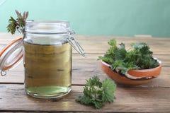 Stinging nettles. Tea on kitchen rustic table background stock photos