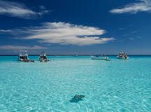 Stingray City Stock Image