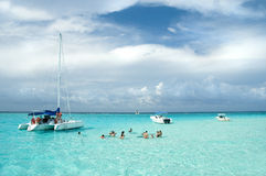 Stingray City Swim Stock Photography